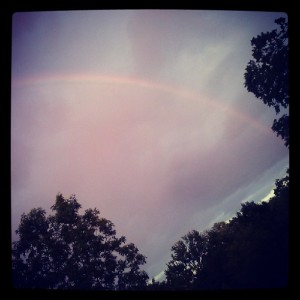 Rainbow that appeared during our call, while the sun peaked out. Just another example of what can happen when you pare two opposites together.